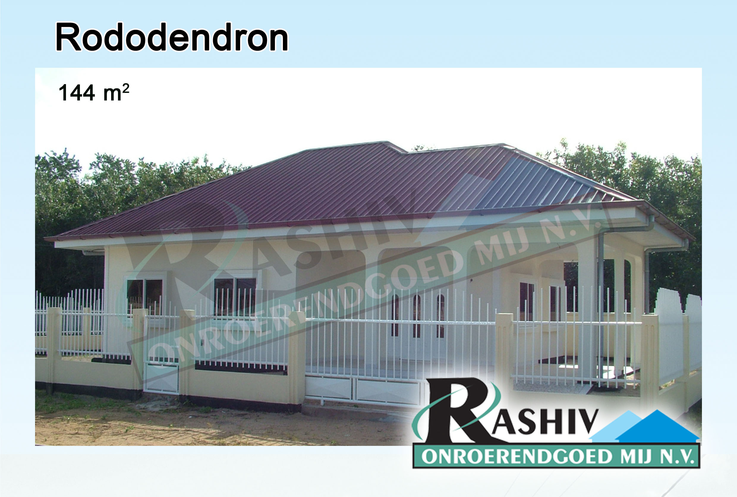 Rododendron-1